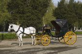 Horse And Carriage In The Plaza De Espana, Seville, Spain — Stock Photo