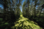 Blurred Motion On Pathway — Stock Photo
