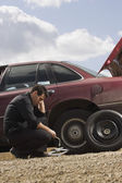 Tire Frustrations At Roadside — Stock Photo