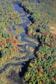 Aerial View Of Willard Brook State Forest — Stock Photo