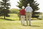 Senior Couple Walking Hand In Hand — Stockfoto