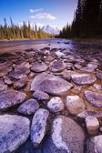 Rocky Riverbed — Stock Photo
