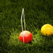 A Croquet Game — Stock Photo