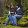 Stock Photo: Reading Together