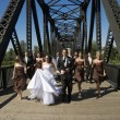 Stock Photo: Wedding Party