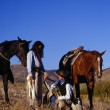Cowboy And Cowgirl Holding Hands Beside Their Resting Horses, Ponderosa Ranch. — Stock Photo #31720967