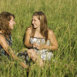 Two Young Women Talking In Field — Stock Photo #31721595