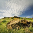 Stock Photo: Rocky Landscape In Dinosaur Provincial Park, Alberta