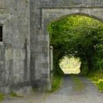 Castle In Northern Ireland — Stock Photo