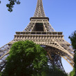 Eiffel Tower — Stock Photo #31722575