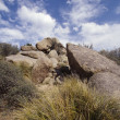 Stock Photo: Boulders In Desert