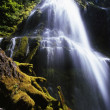 Proxy Falls — Stock Photo #31722907