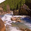 Stock Photo: Rushing Stream In Wilderness