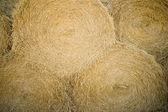 Bales Of Hay — Stockfoto