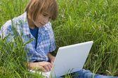 Boy Using A Laptop — Stock Photo