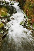 Rushing Stream In Winter — Stock Photo