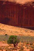 Red Rock Canyon — Foto de Stock