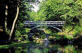 Scenic Bridge — Stock Photo