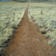 Stock Photo: Trail Leading To Volcano