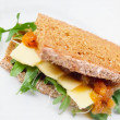 cheese sandwich&quot — Stock Photo