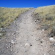 Stock Photo: Rocky Trail