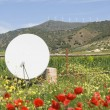 Poppy And Wild Flower Garden With Satellite Dish West Of Álora, Malaga, Spain — Stock Photo