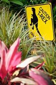 Cautionary T-Rex Crossing Sign — Stock Photo