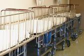 Pediatric Hospital Stretchers In Hallway — Stock Photo
