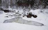 Creek In The Snow — Foto Stock