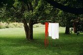 Laundry Drying On Line Outdoors, Waterloo, Quebec, Canada — Stock Photo