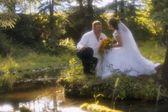 Portrait de couple nouvellement marié — Photo