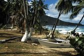 Boats On The Shore Of West Indies Island — Stock Photo