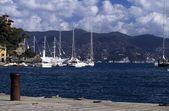 Sailboats Moored, Portofino, Italy, Europe — Stock Photo