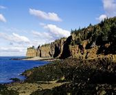 Shoreline With Rocky Cliffs And Forest Above — Stock Photo