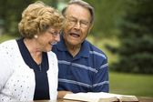 Senior Couple Laughing — Stock Photo