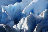 Exit Glacier, Alaska — Stock Photo