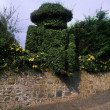 Co Down, Scarva, 19Th C. Topiary Figure Of William Iii At Railway Station, Ireland — Stock Photo