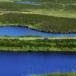 Boorin Nature Reserve, Co Tyrone, Ireland — Stock Photo #31764999
