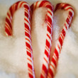 Candy Canes — Stock Photo #31767209