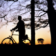 Cycling, Cyclist At Sunset — Stock Photo