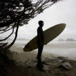 Surfer Observing Water From Beach — Stock Photo #31768613