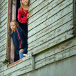 Girls Looking Out Of Barn — Stock Photo #31769123