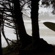 Silhouette Of Surfer Looking Out To Water — Stock Photo #31769571