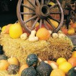 Stock Photo: Wagon Wheel On Hay Bale Surrounded By Variety Of Squash