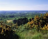 S Monument, Co. Armagh, Ireland — Stock Photo