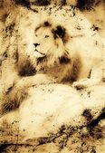 Old Photograph Of A Lion On A Rock — Stock Photo