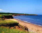 Shoreline In Prince Edward Island, Canada — Stock Photo