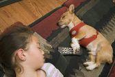 Little Girl And Dog Sleeping Together — Stock Photo