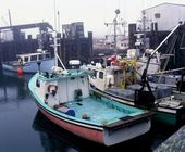 Fishing Boats In A Harbour — Stock Photo