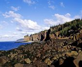 Rocky Shoreline With Forest Area Above — Stock Photo